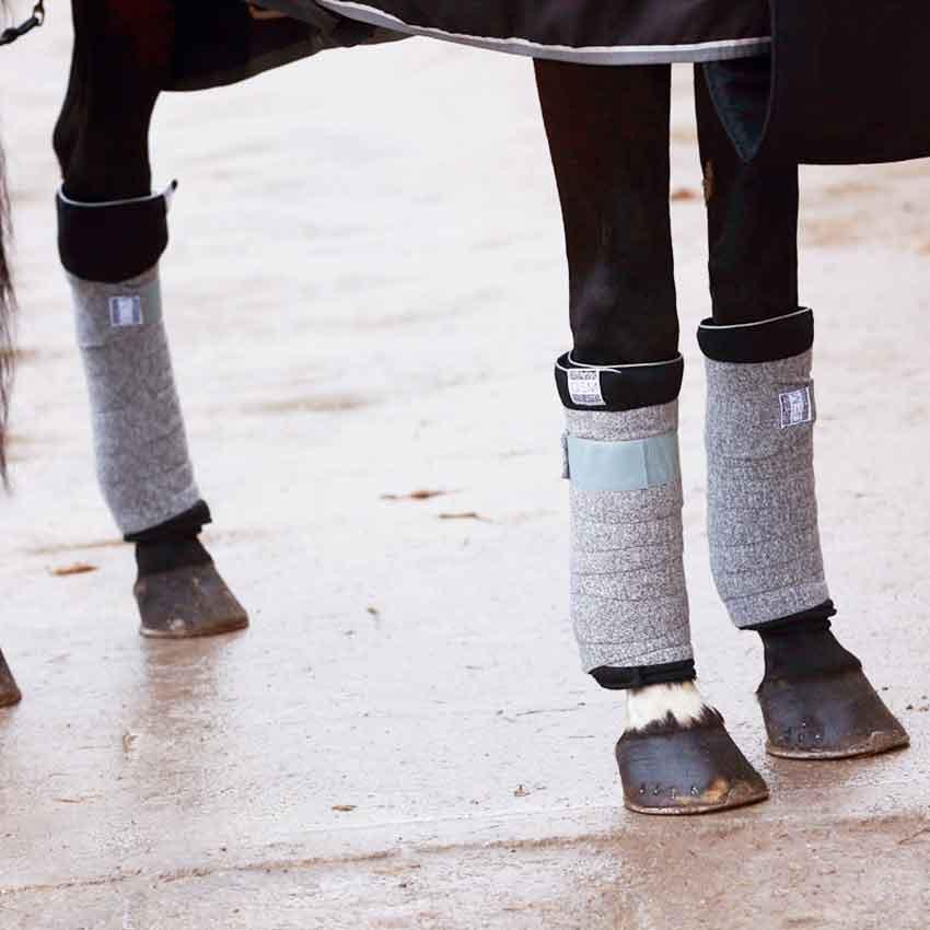 Bande de repos cheval et stable boots : tout savoir